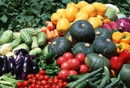 蔬菜批发网_168商务网