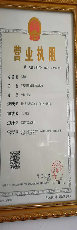 浦城县绿农丹桂苗木基地