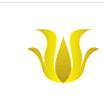 深圳市帕菲特贸易有限公司