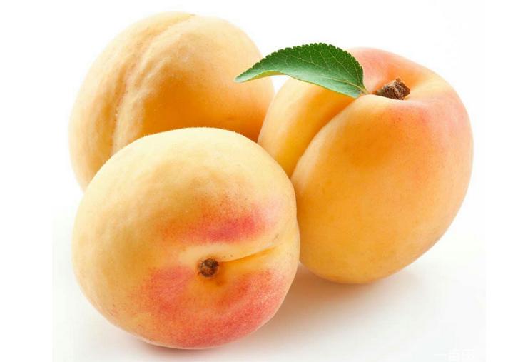 黄桃种植基地_商机天下网