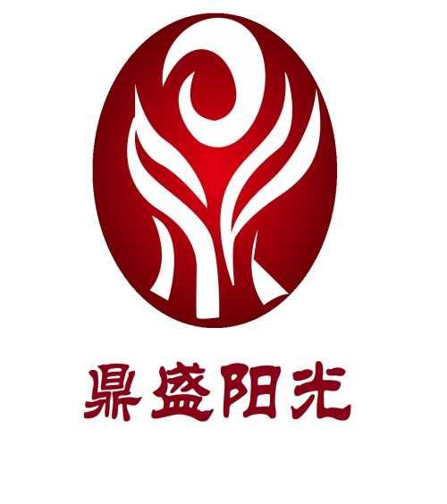 宁夏鼎盛阳光环保科技有限公司