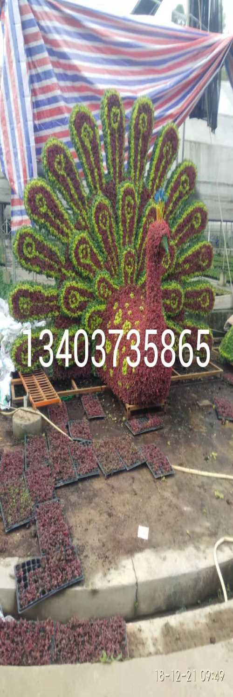 大型仿真植物造型_铝业网