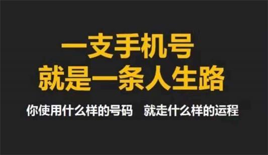 专业生命密码培训费用_深圳市东青腾网络科技有限公司