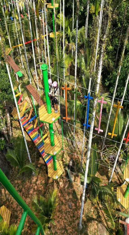 丛林穿越价格相关 陕西丛林穿越安装