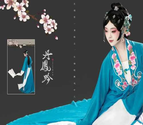 中国西南东芳季艺术_西山区摄影、摄像服务古艺