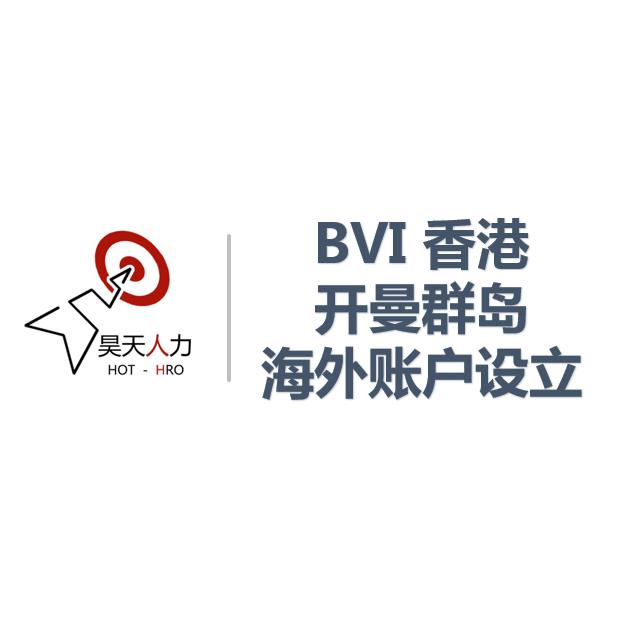 申请注册BVI公司_申请注册其他中介服务代理