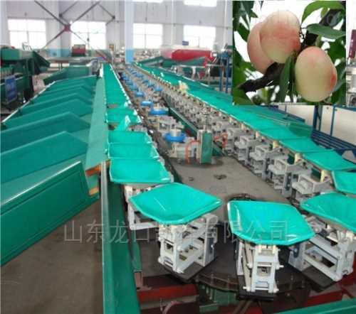 口碑好的蘋果分選機供應廠家_智能其他農業機械供應商