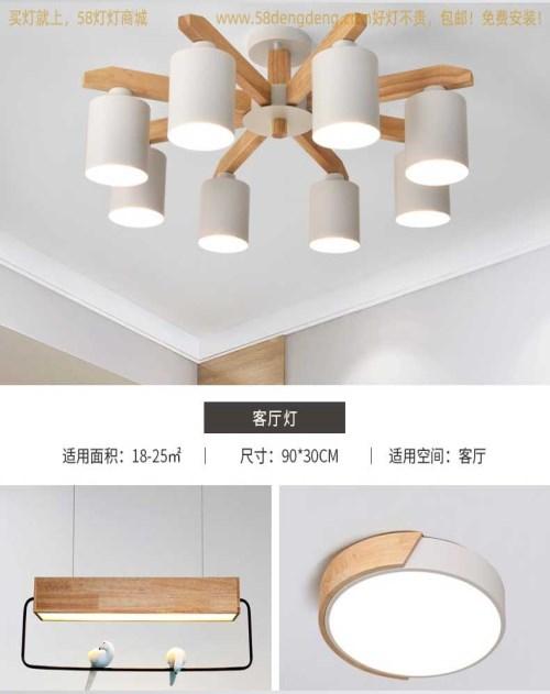 现代北欧风灯具品牌排名_其他灯具配附件相关