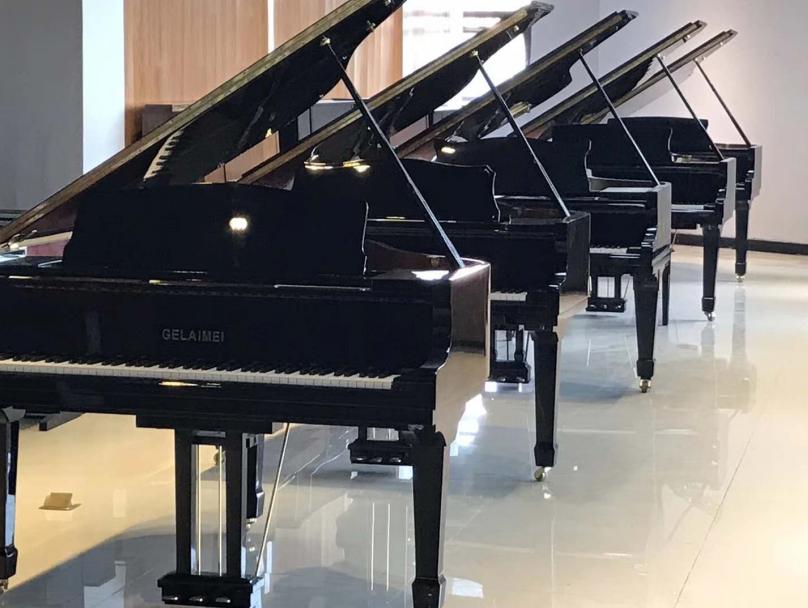 驻马店伯恩斯坦钢琴型号推荐_国产其他乐器怎么选-河南欧乐乐器秒速赛车是真的吗