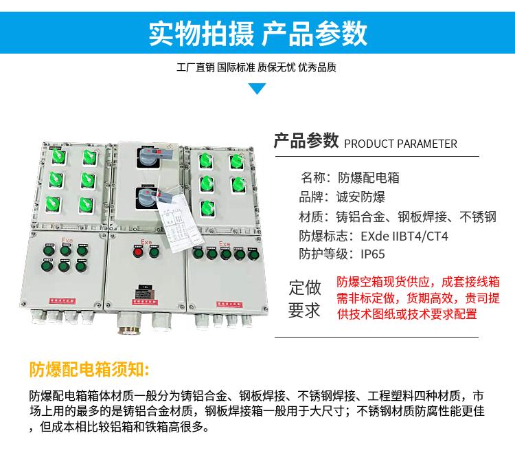 专业防爆配电箱供应厂家_进口配电箱柜定制