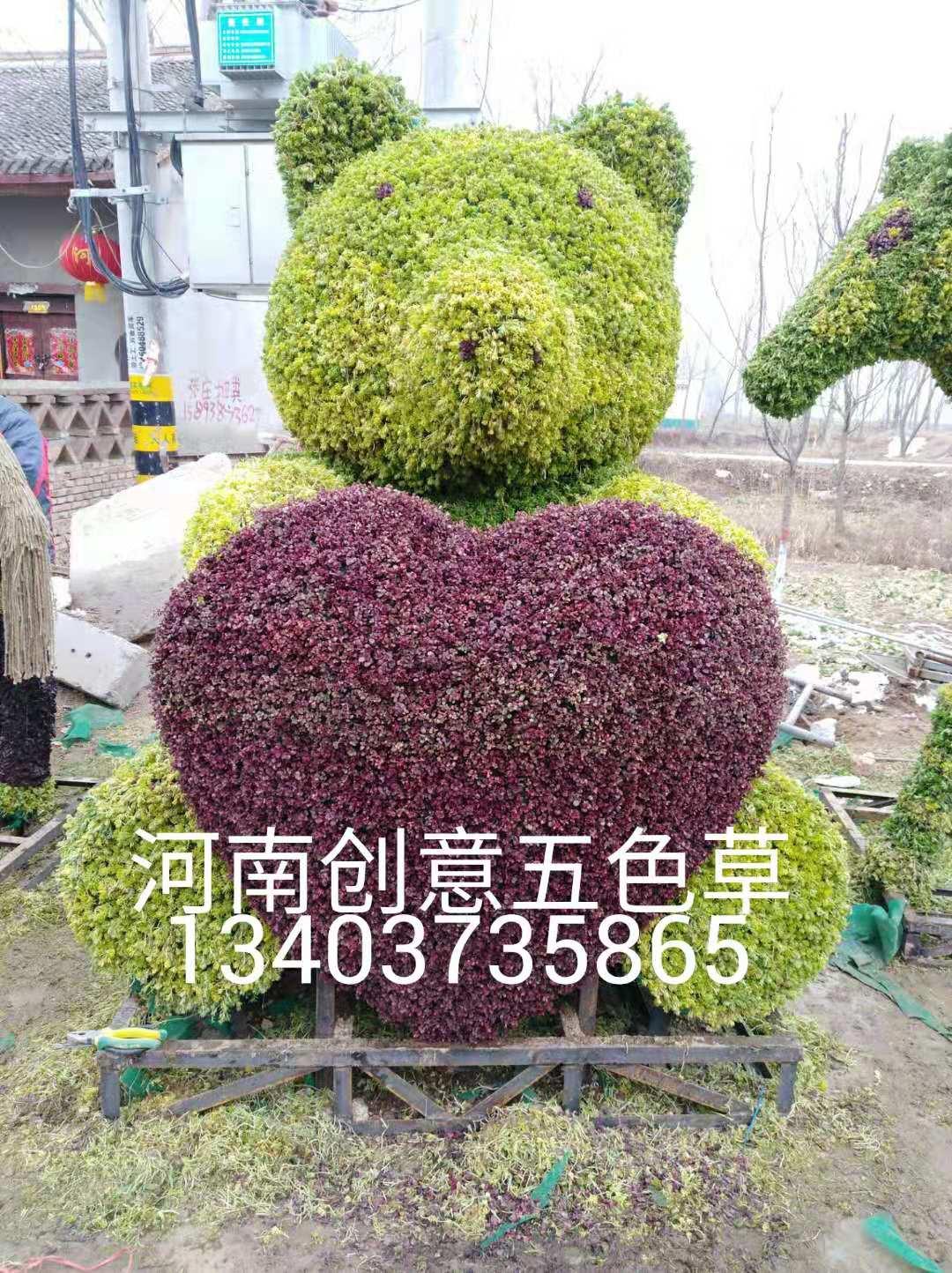 五色草造型價格_景區園藝剪哪家專業