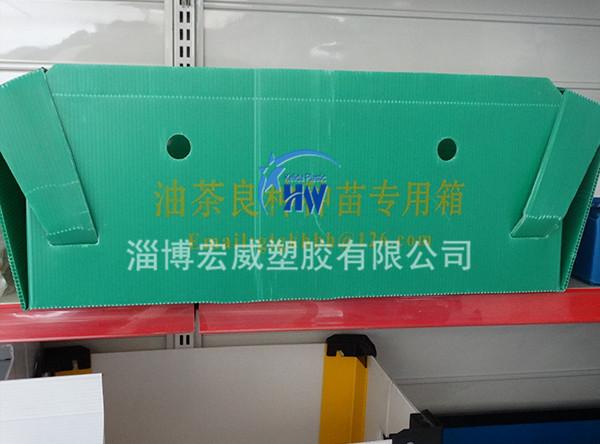 质量好的钙塑箱价格_蔬菜其他塑料加工