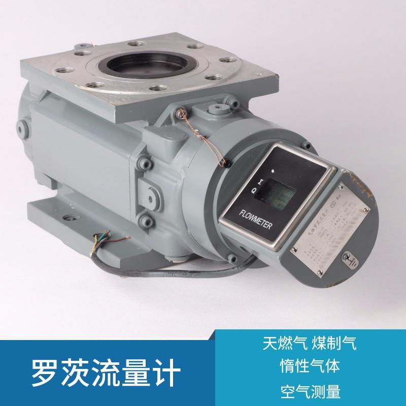 天然气罗茨流量计_罗茨流量计相关-安克仑特仪器(江苏)有限公司