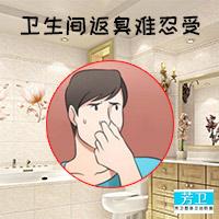 厕所卫生间反味小妙招_专业家政服务防臭