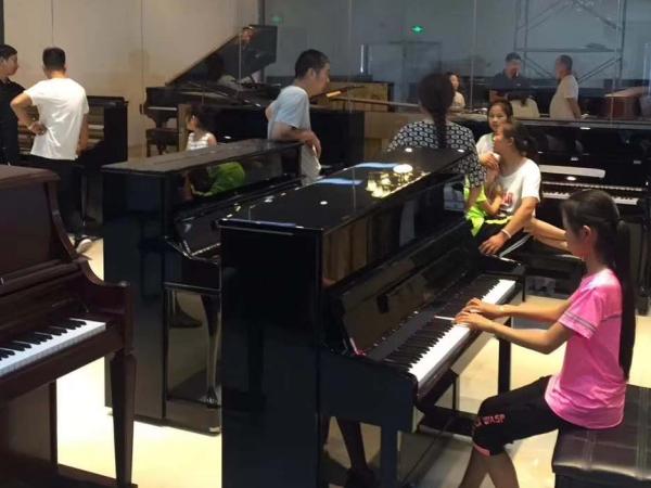 安徽买一万多的舒马赫钢琴官网型号_练习琴其他乐器多少钱-河南欧乐乐器有限公司