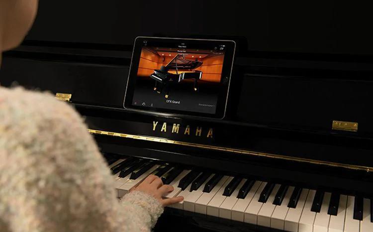 开封大型跨界钢琴特价_原装进口弹拨类乐器尺寸-洛阳誉声乐器有限责任公司