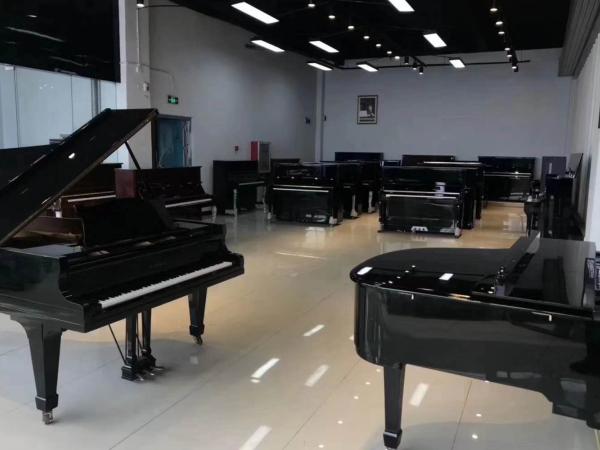 焦作买两万多的珠江恺撒堡钢琴ek系列_去哪里买键盘类乐器-河南欧乐乐器有限公司