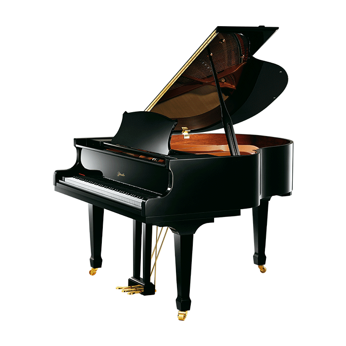开封专业里特米勒钢琴_弹拨类乐器相关-洛阳誉声乐器有限责任公司
