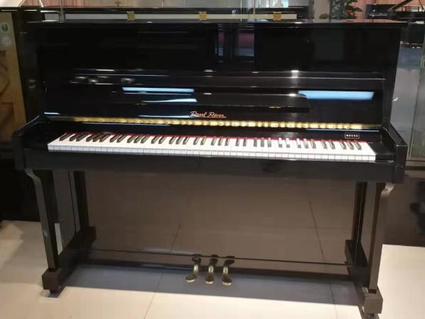 珠江恺撒堡钢琴