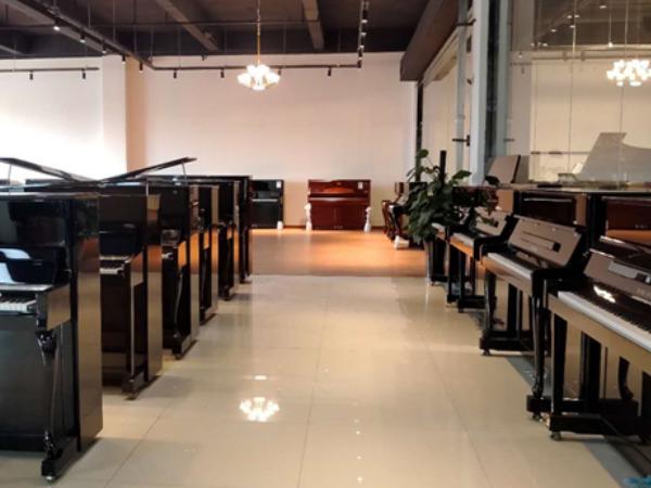河南商丘恺撒堡钢琴专卖店_智能钢琴相关-河南欧乐乐器有限公司