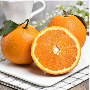 柑橘苗种植_柑橘类相关-简阳市林园苗木种植专业合作社