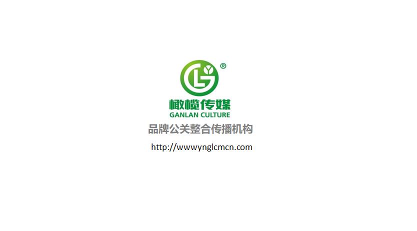 庆典演出策划公司-云南橄榄文化传媒有限责任公司