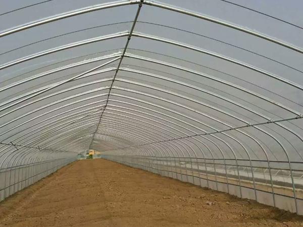 安阳玻璃拱形温室大棚工程_无公害温室、大棚厂-安阳市诚信温室工程有限公司