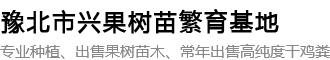 内黄县中召乡圆梦家庭农场