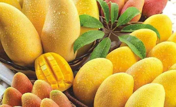 口感好的芒果_水分足的其他生鲜水果多少钱-成都海聚通商贸有限公司