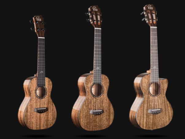 鄭州缺角吉他專賣店_女生買彈撥類樂器什么牌子好-河南歐樂樂器批發有限公司