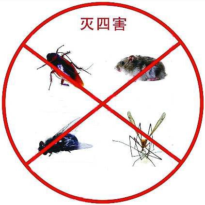 上海虫害防治哪家好_蟑螂商务服务专业公司-上海喆芈虫害防治服务有限公司