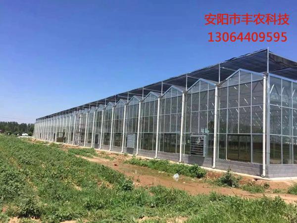 我们推荐河南水产养殖大棚专业定制_ 种植大棚相关-安阳市丰农科技服务有限公司