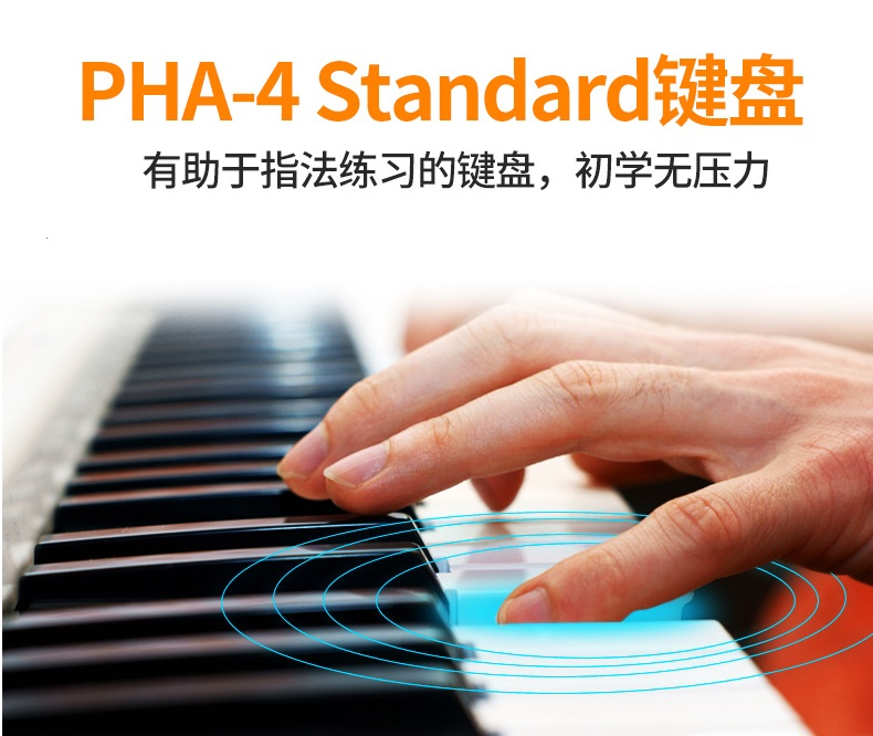 郑州珠江电钢琴和电子琴的区别-河南欧乐乐器批发有限公司