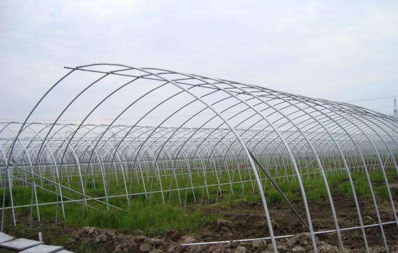 单体大棚_单体大棚价格相关-长沙市绿地棚业有限公司