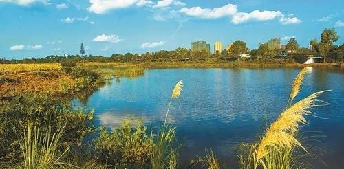 边坡绿化设计_湖南创价生态园林有限公司_E路网