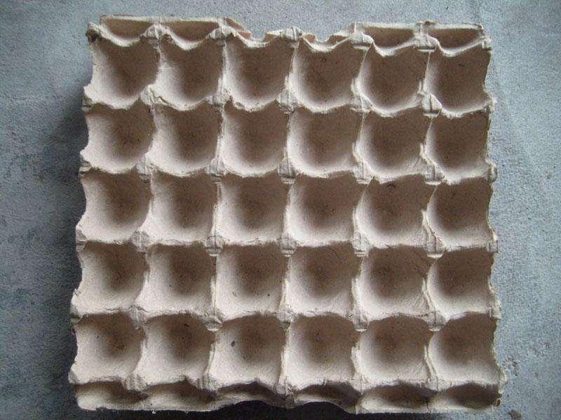 蛋托生产机_正宗其他纸加工机械购买-湖南双环纤维成型设备有限公司