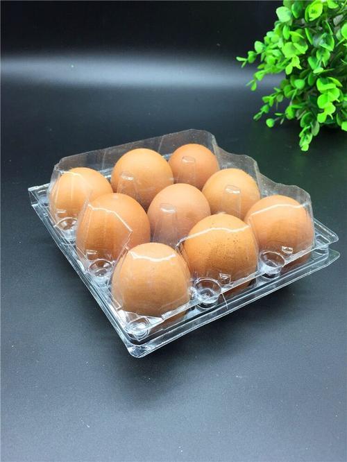 鸡蛋纸盒托盘设备哪里买_原装进口-湖南双环纤维成型设备有限公司