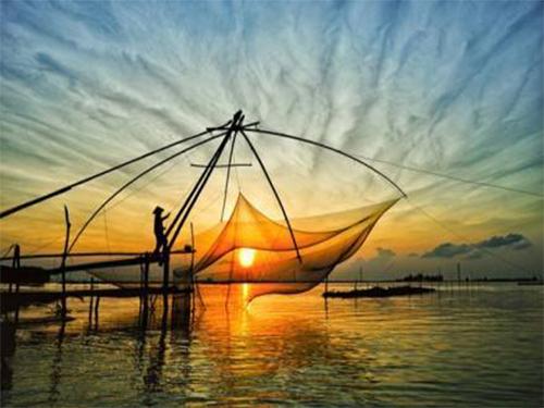 我们推荐深圳鱼网批发_渔网生产相关-沅江市福利渔网加工厂