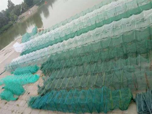 地笼网销售_地笼网报价相关-沅江市福利渔网加工厂