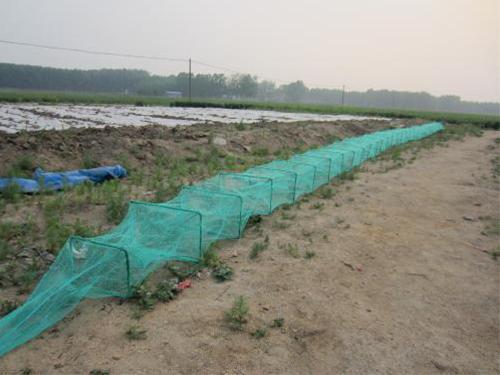 魚網箱多少錢一個_沅江市福利漁網加工廠_企領網