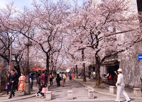 进口日本签证办理_正规旅游服务申请-浙江子午线出国服务有限公司