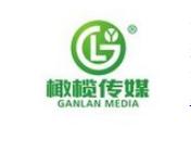云南会展活动策划公司_昆明大型专业传媒-云南橄榄文化传媒有限责任公司