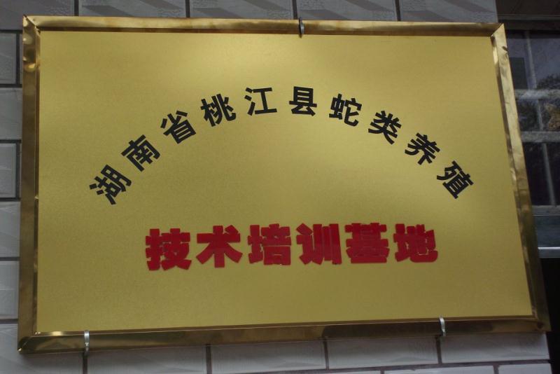 高品质哪里可以学习养蛇_进口特种养殖动物-桃江县黄泥田蛇类养殖场