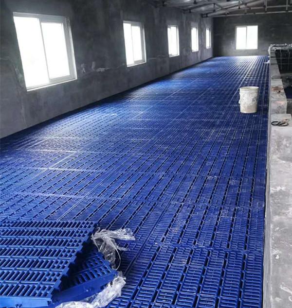 保育猪塑料漏粪板规格_羊用畜牧、养殖业机械厂家-新乡市牧野区辉煌金属材料经营部