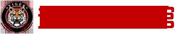 湖南老虎泰拳体育文化发展有限责任公司