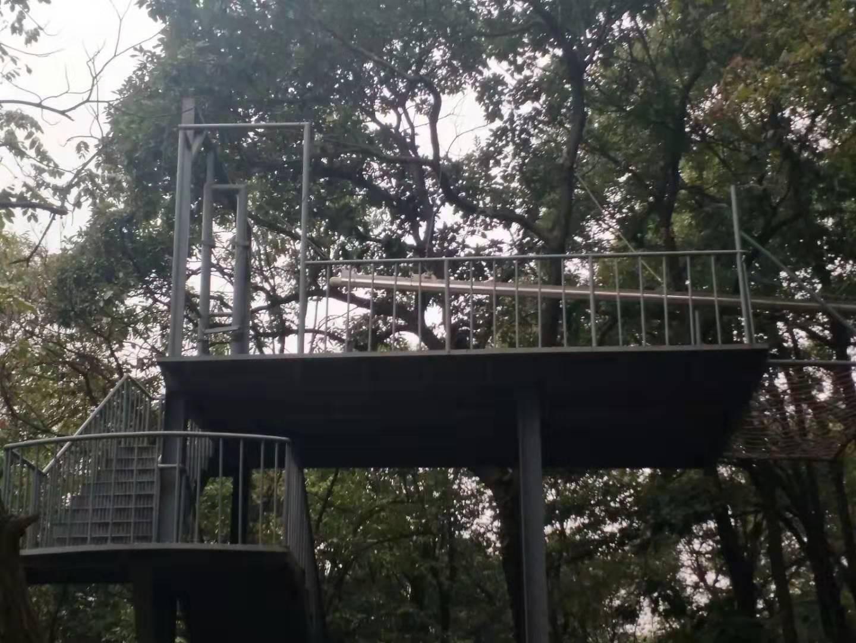 景区丛林穿梭设计_贵州服务项目合作厂家-新乡市中健游乐设备有限公司