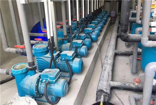 泳池设备公司_专业泳池水处理设备报价-长沙市中鹏工程设备有限公司