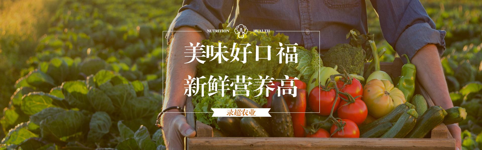 眉山新鲜蔬菜销售_新鲜批发商-成都市录超农业有限责任公司
