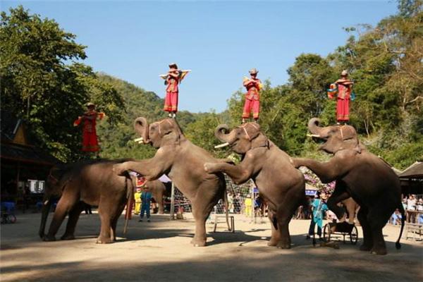 哪个旅行社正规_哪个旅游服务性价比高-湘西亚超旅游服务有限公司