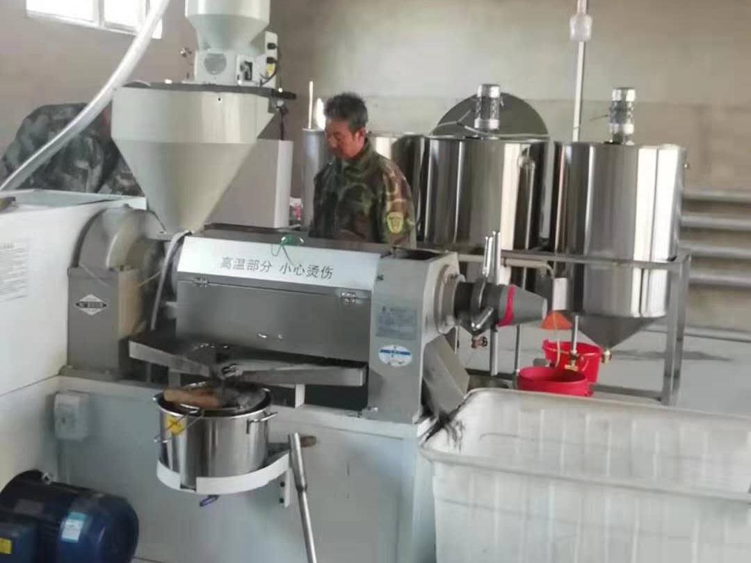 榨油设备销售_自动榨油机相关-滑县民泰粮油机械销售有限公司